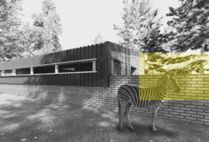 Black Rhino Enclosure & Night Room